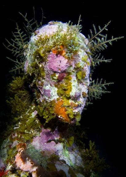 Скулптурната градина на морското дъно - Magazine (8)